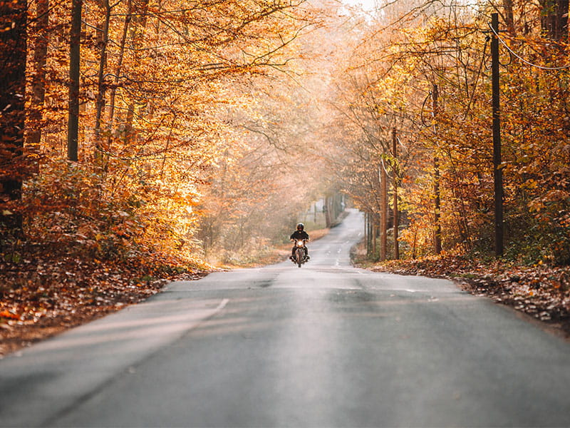 Motorcycle Riding Tips For The Fall Season Dairyland