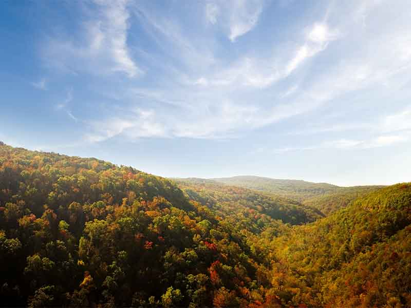 Get Back To Nature With A Scenic Ride Through The Ozark National